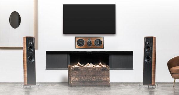 Sonus Faber PL 563 In-wall Speaker (Single Speaker) 1