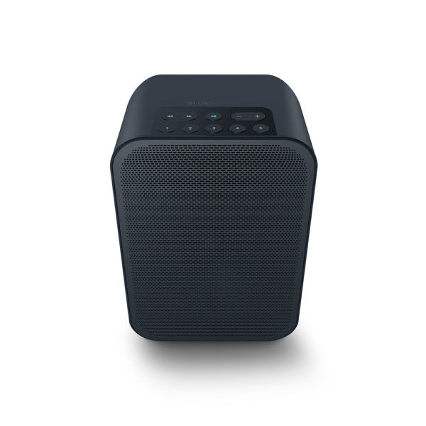 Bluesound Pulse Flex 2i - Portable Wireless Multi-room Music Streaming Speaker 6