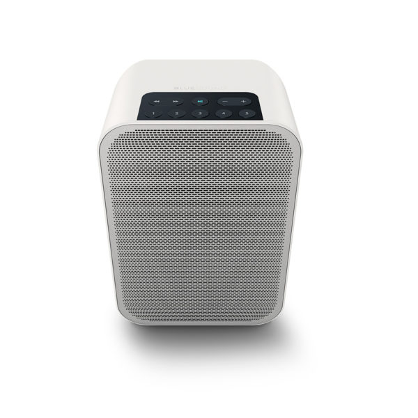 Bluesound Pulse Flex 2i - Portable Wireless Multi-room Music Streaming Speaker 3