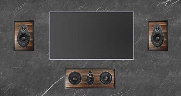 Sonus Faber PL 563 In-wall Speaker (Single Speaker) 2