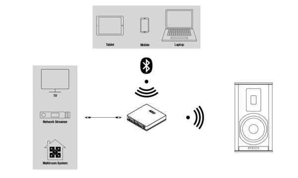 Piega Premium Wireless 301 Speakers (Pair)